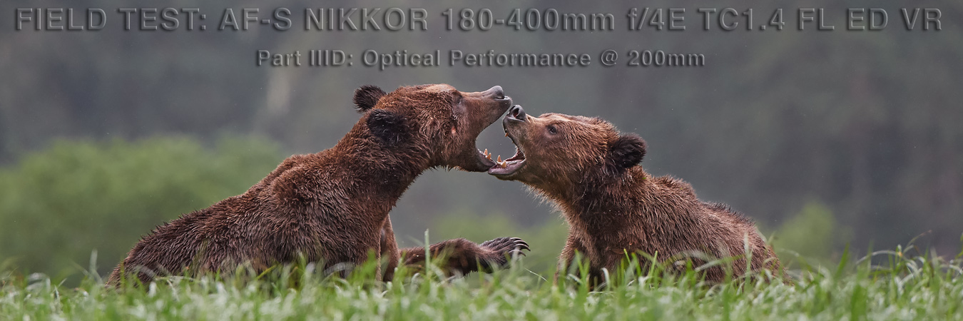 Nikon 180-400mm Field Test: Optical Performance at 200mm