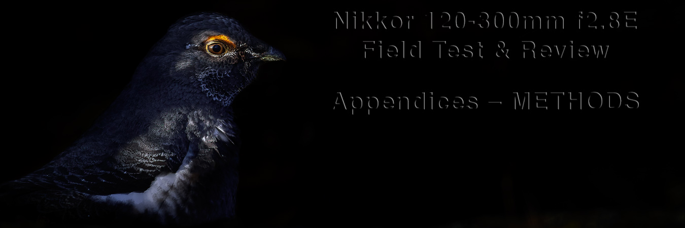 Nikkor 120-300mm f2.8E Field Test: Appendices - Methods
