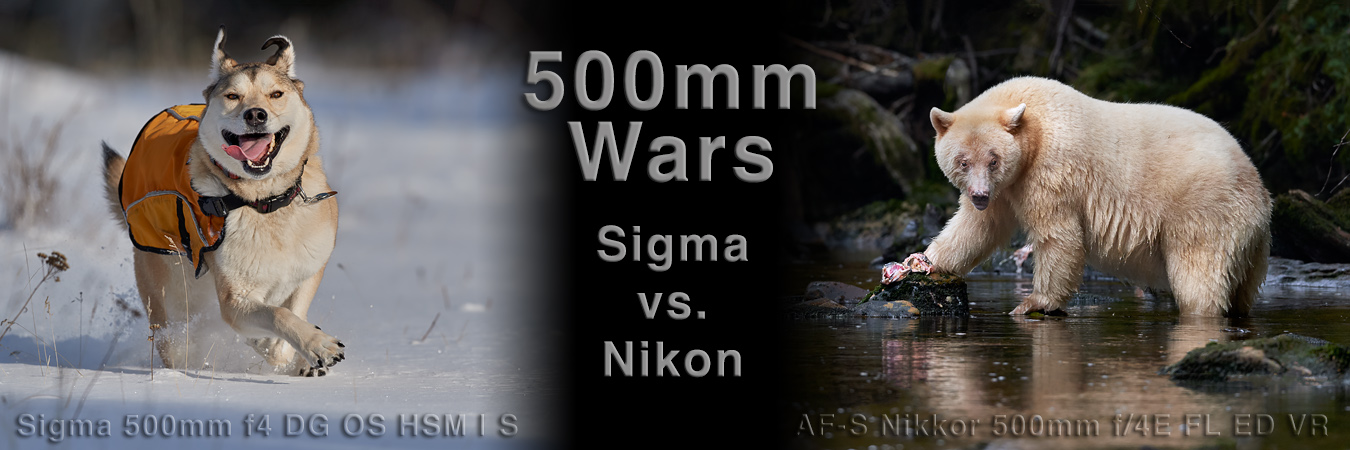 500mm Wars: Sigma vs. Nikon